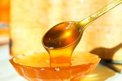 Отказ от употребления меда при кандидозе кишечника