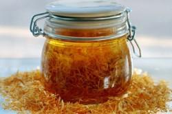 Польза травяных настоев для лечения грибка на губах