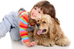Контакт с зараженным животным - причина стригущего лишая