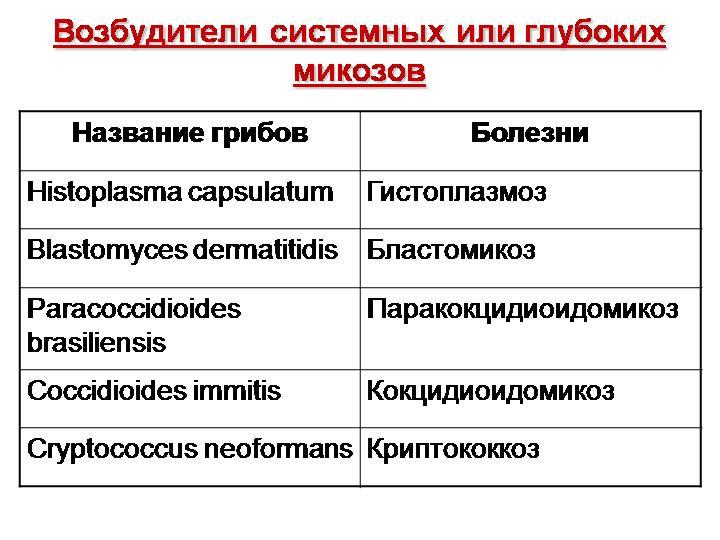 bakterialnie-virusnie-gribkovie-kozhnie-zabolevaniya